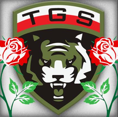 http://www.tgs.ayz.pl/Wydarzenia/tygrysi_znak/prace/av_red_rose.png